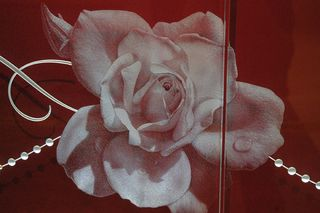 8035 St Marys_rose