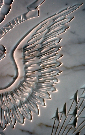 Marble wing detail